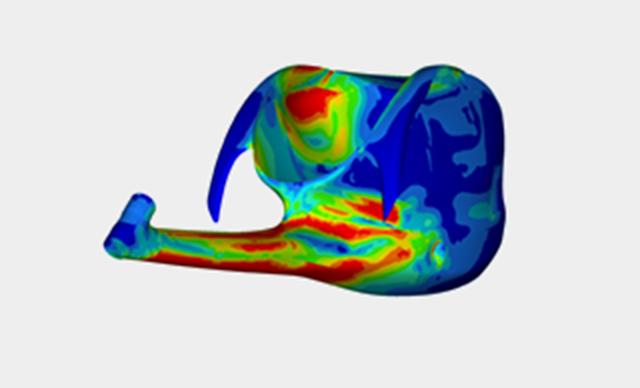 フレーム構造解析画像